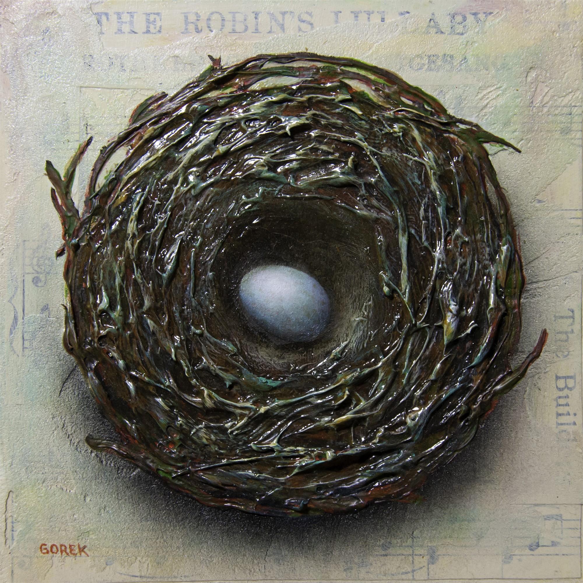 Birds Nest 1 by Thane Gorek