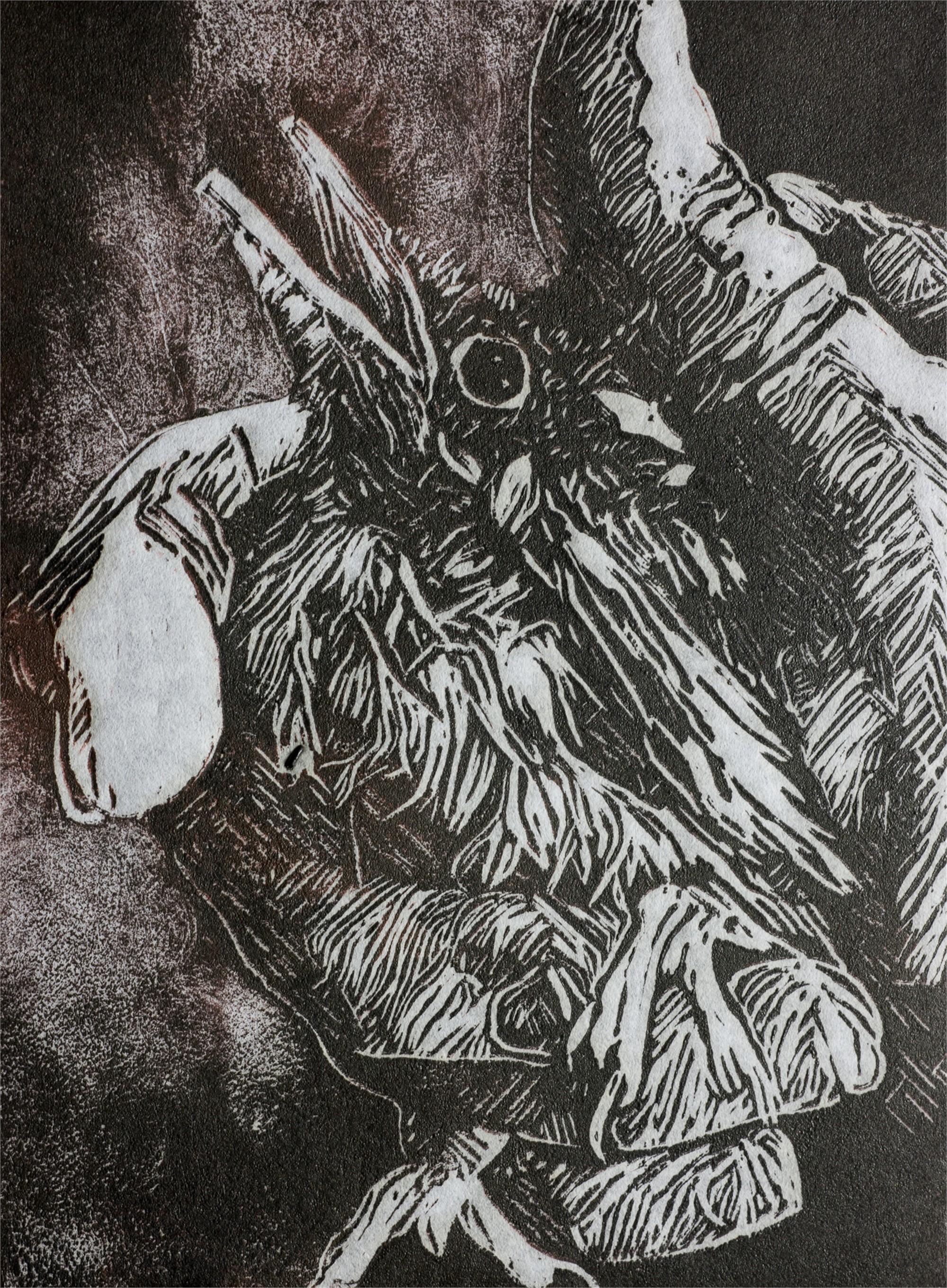 Bird in the Hand by Debi Lynn Fendley