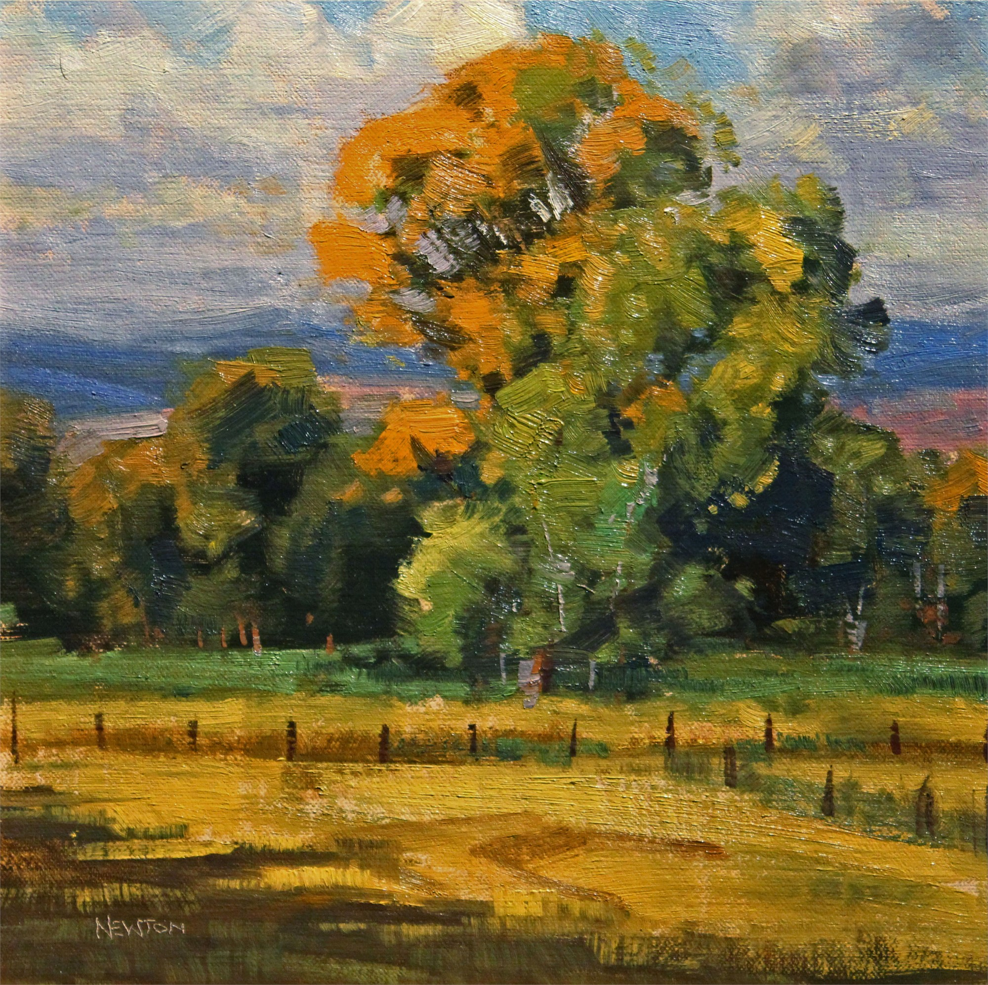 Cottonwood in September by Wes Newton