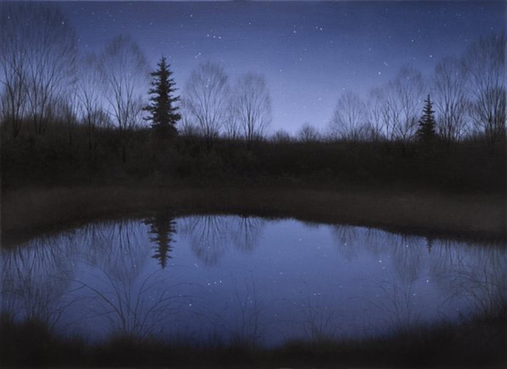Starry Pond by Alexander Volkov