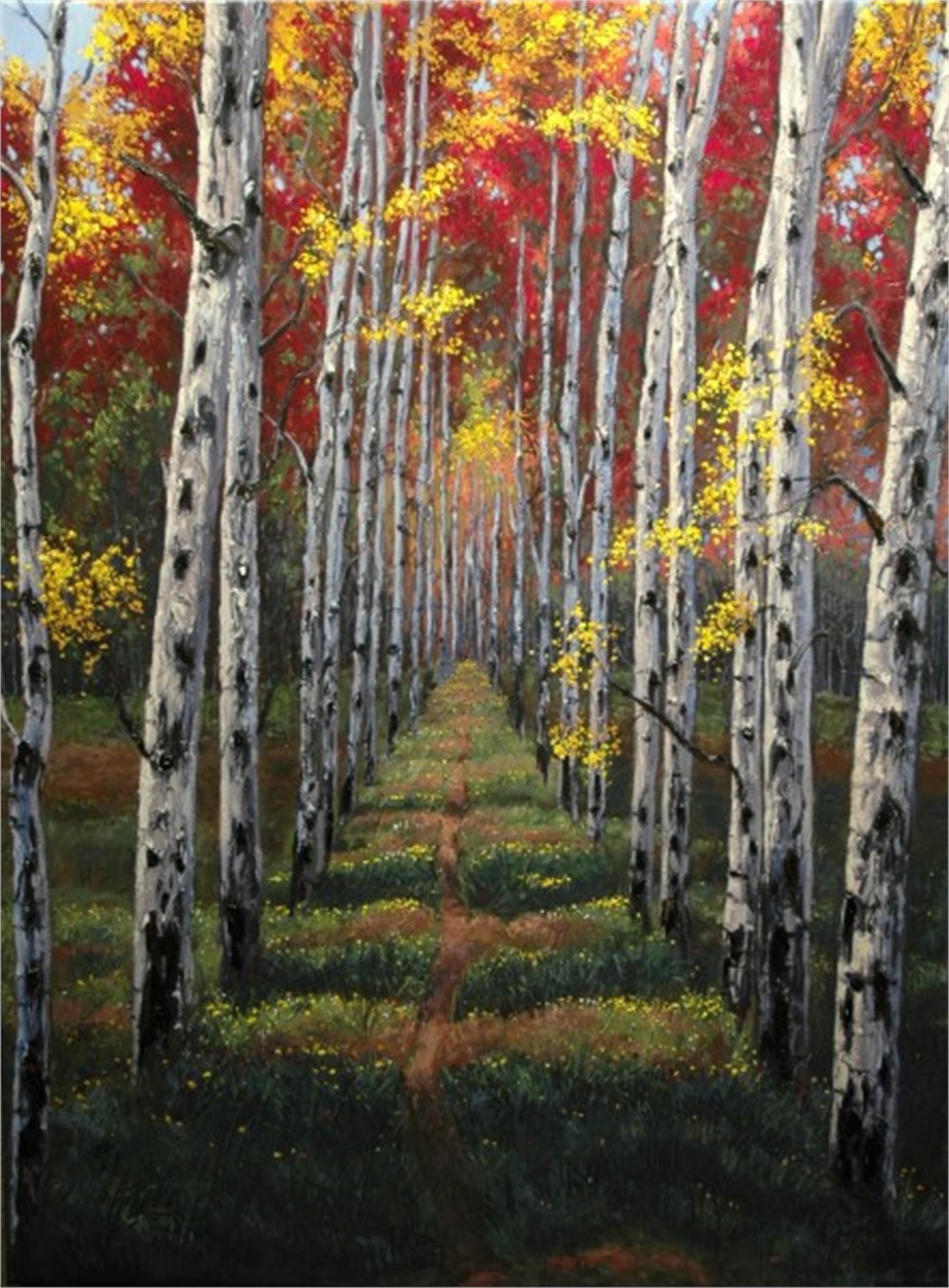 Road Less Traveled by Jennifer Vranes
