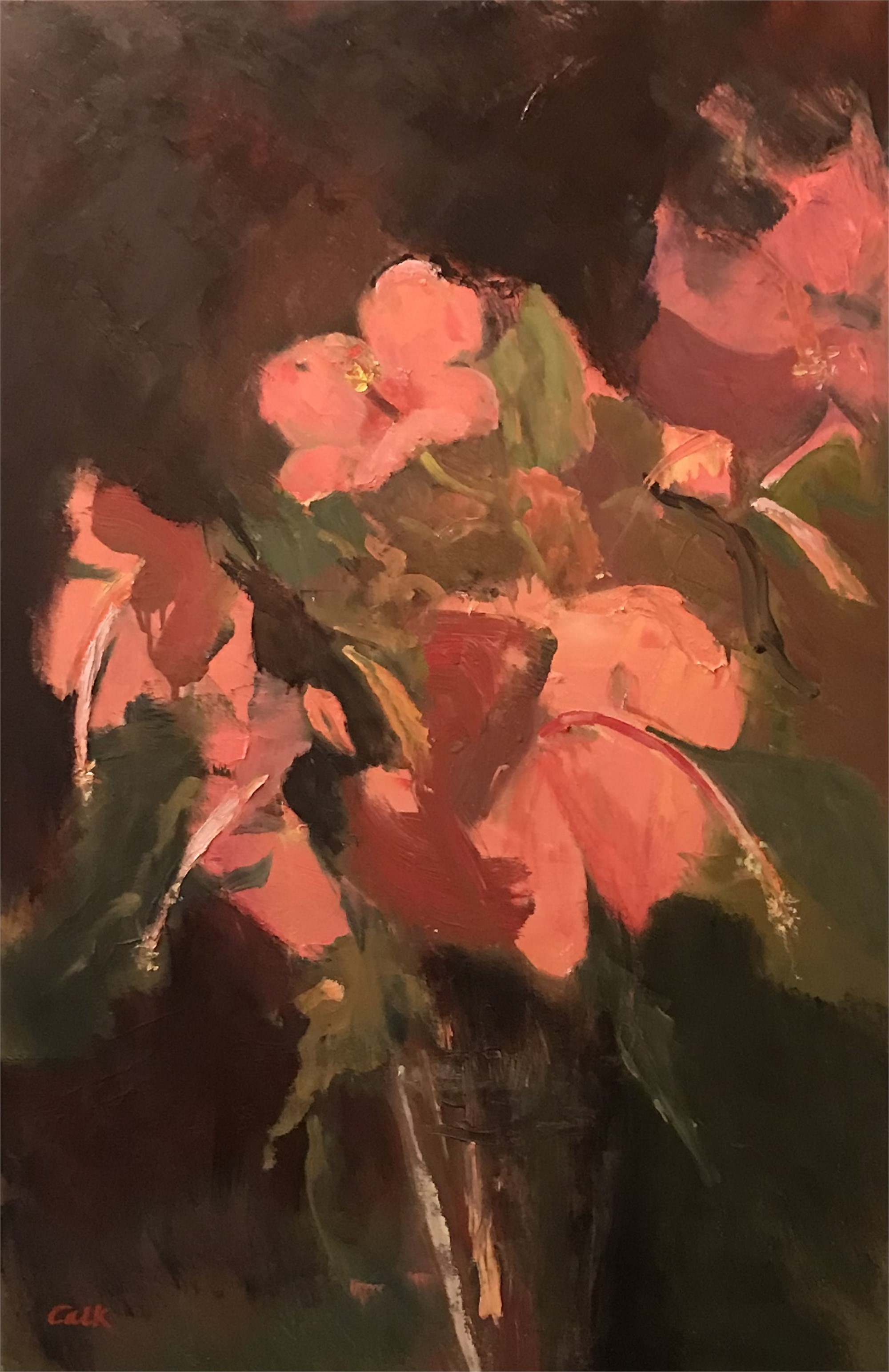 Hibiscus by James Calk