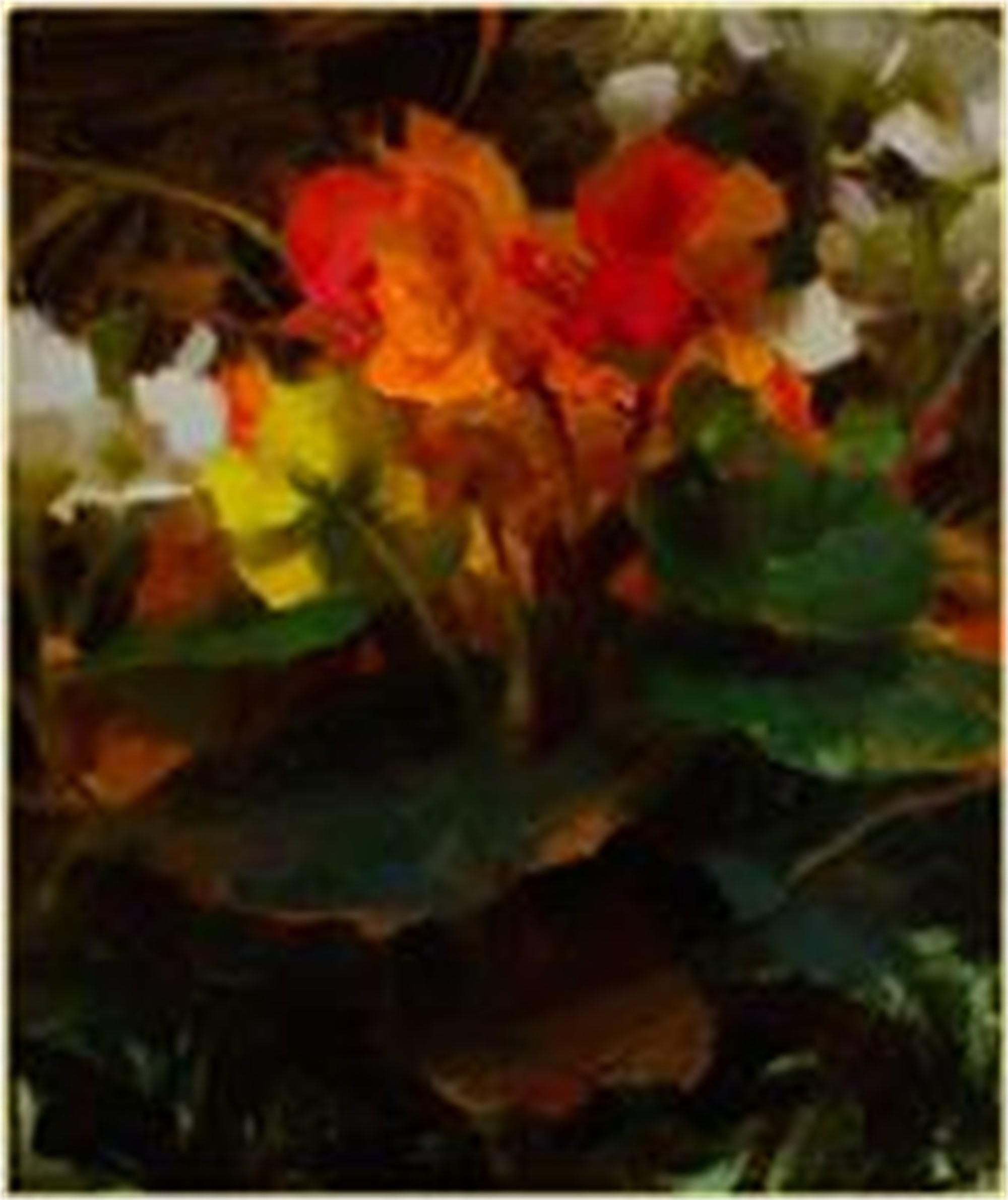Begonias by Daniel Keys