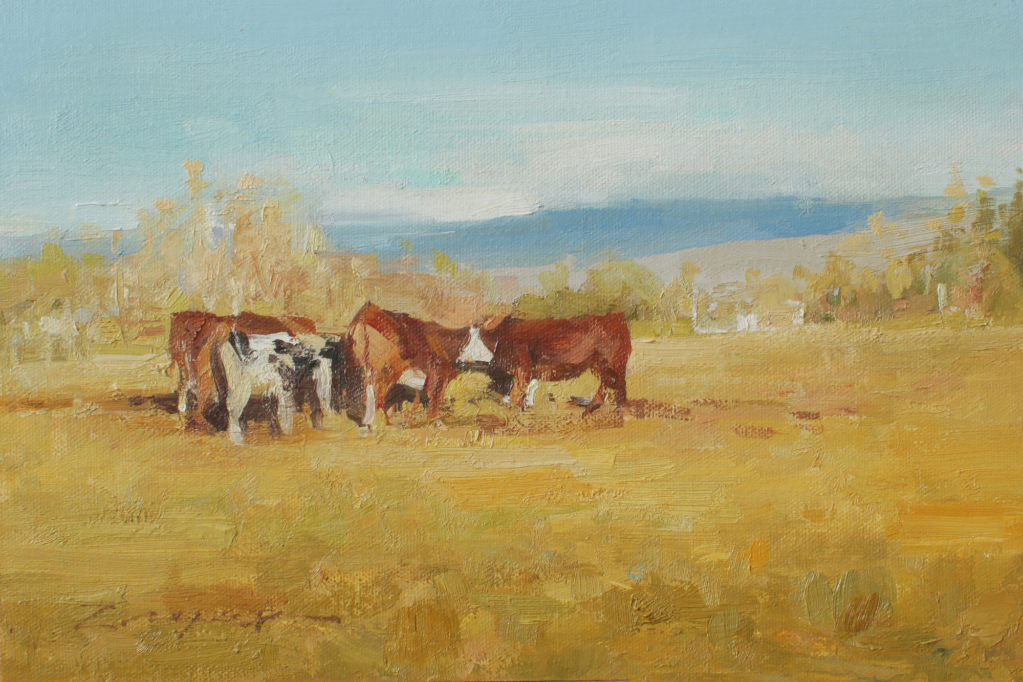 January Cows by Allie Zeyer