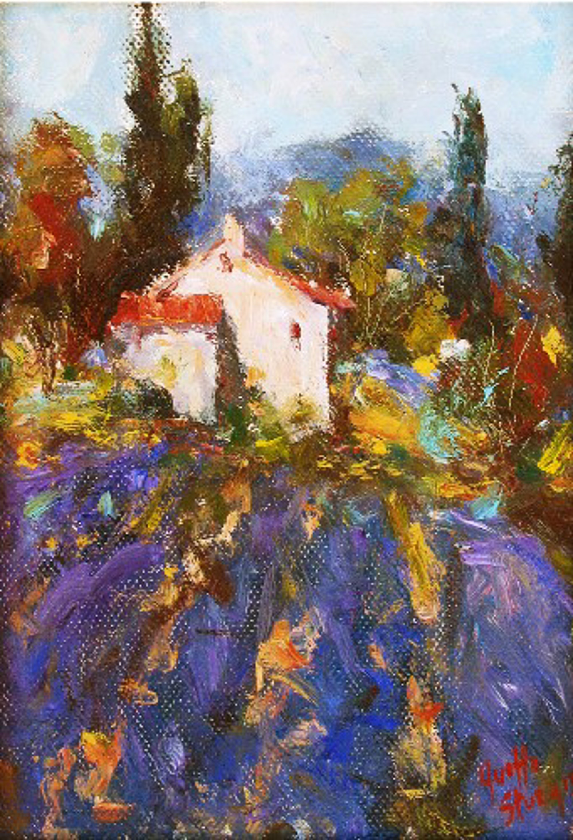 PROVENCE by YVETTE
