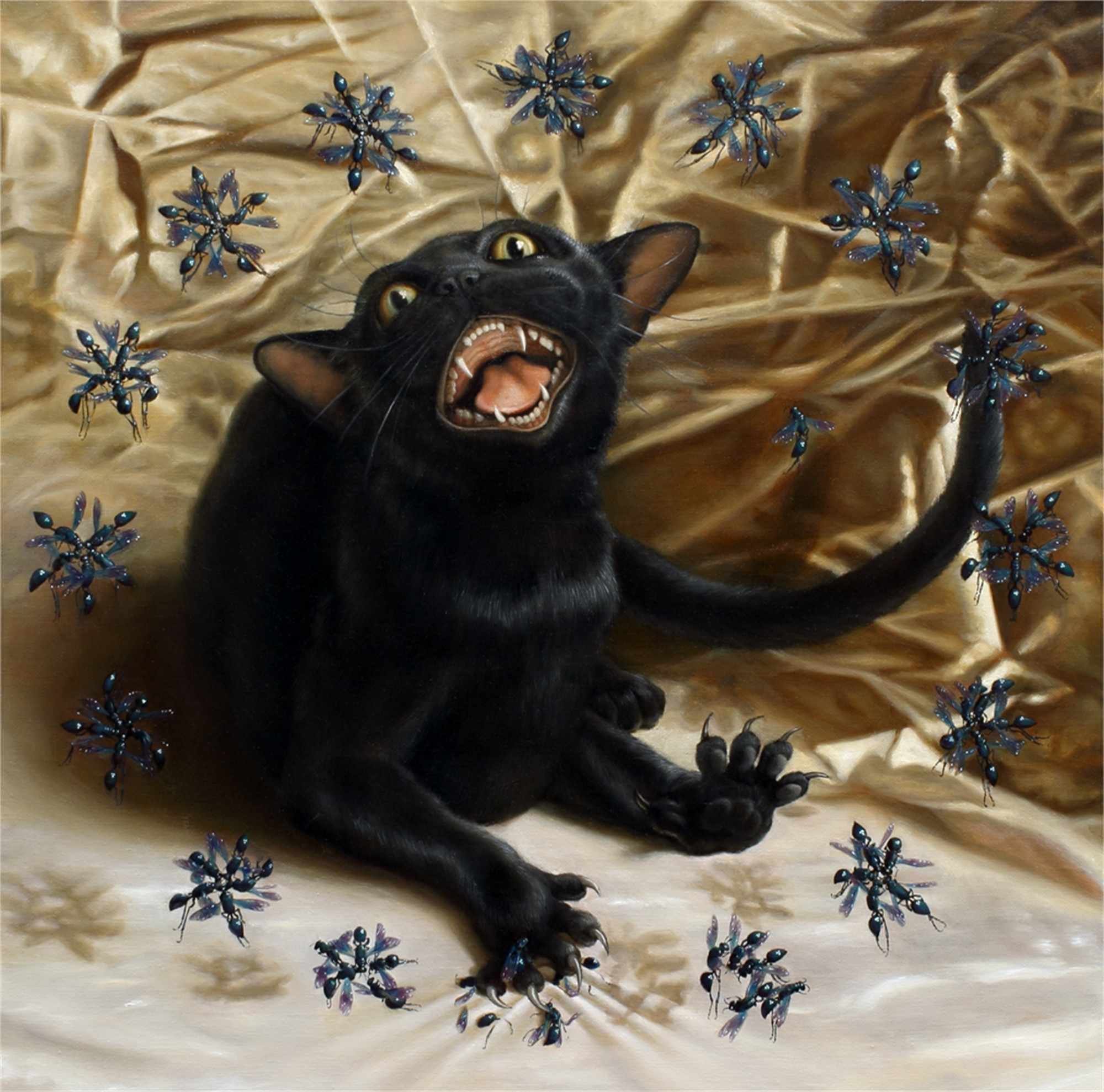 Cat with Wasps by Zane York