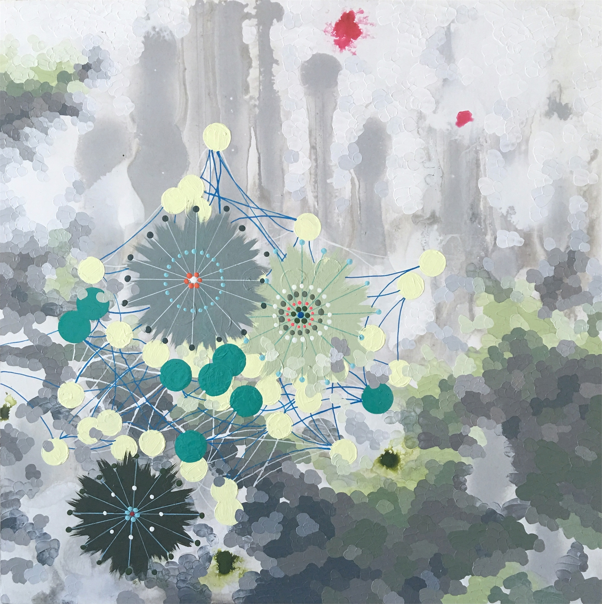 Lichen by Second State: Elaine Coombs and Heather Patterson