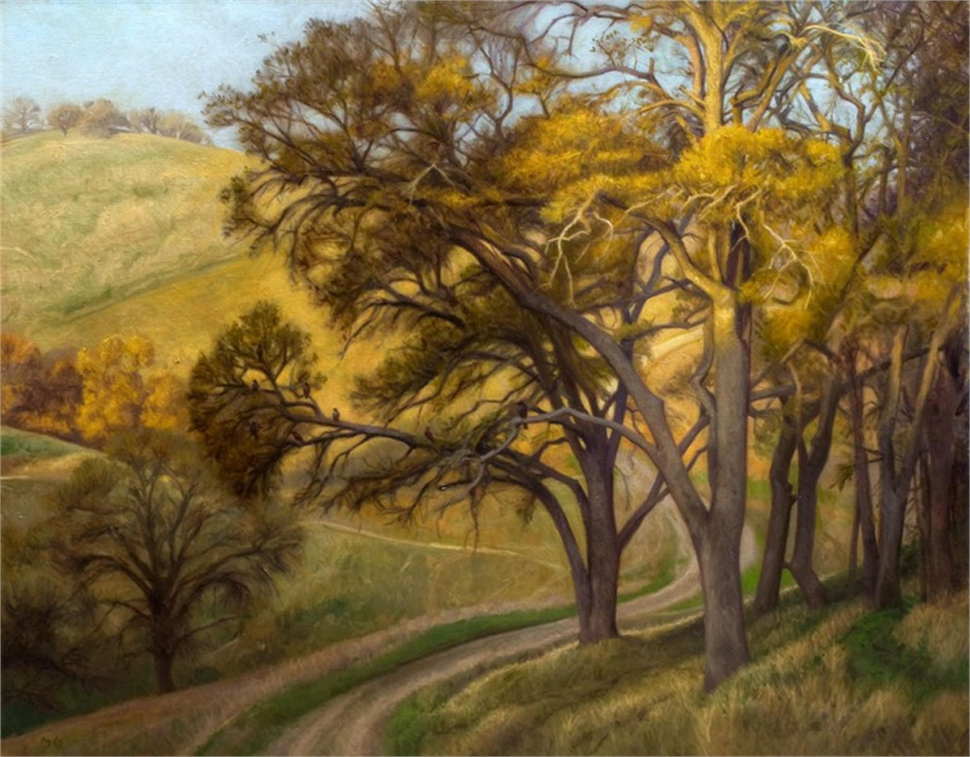 Diablo Oaks by Ocean Quigley