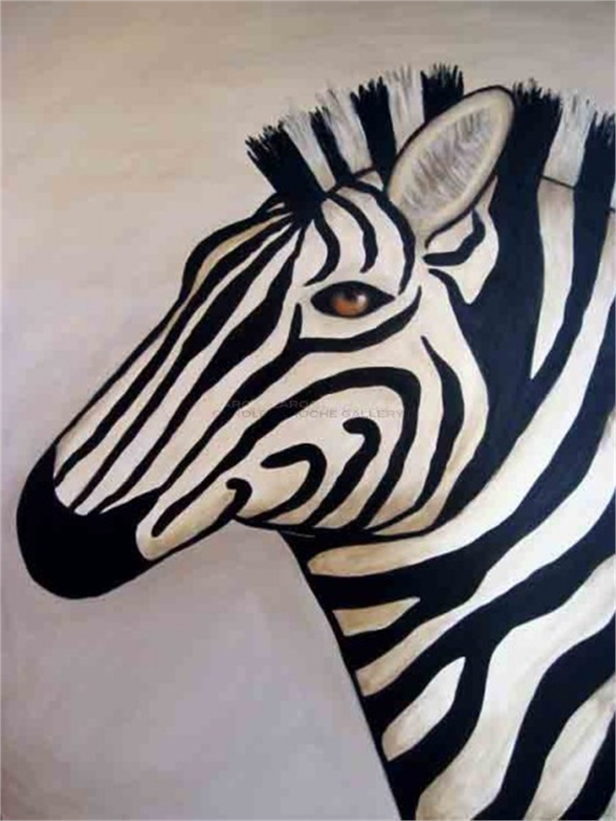 "WHITE ZEBRA - limited edition giclee on canvas 40""x30"" by Carole LaRoche"