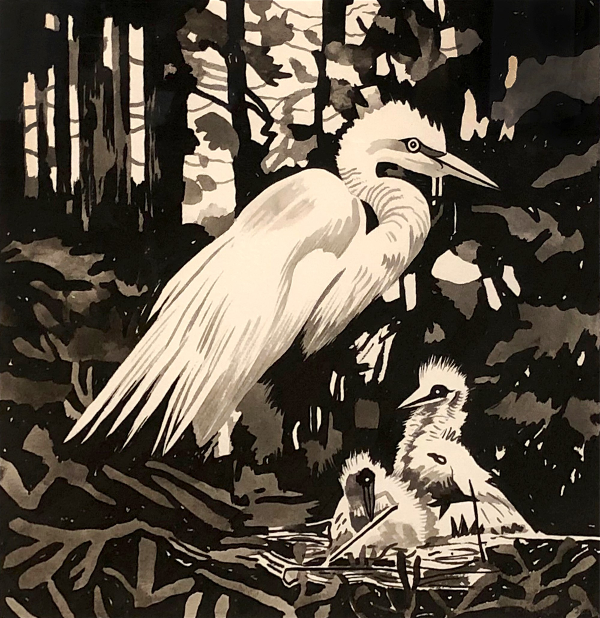 Egrets Nesting by Billy Hassell