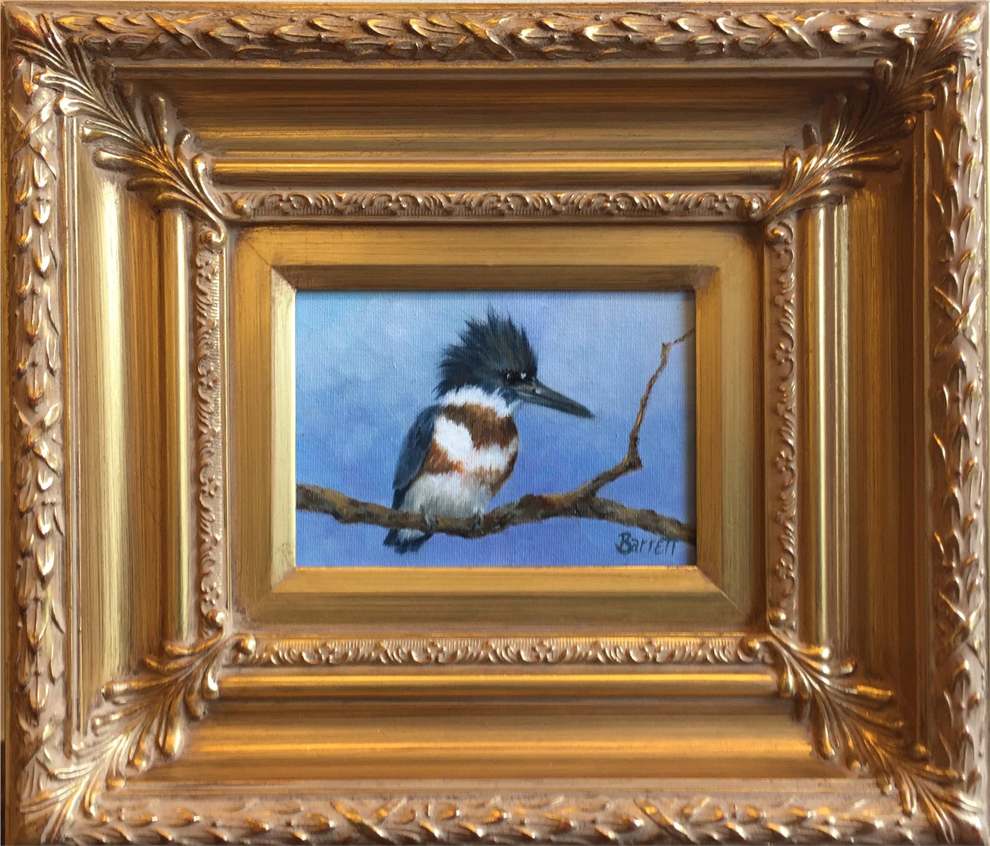 Kingfisher by Barrett Edwards