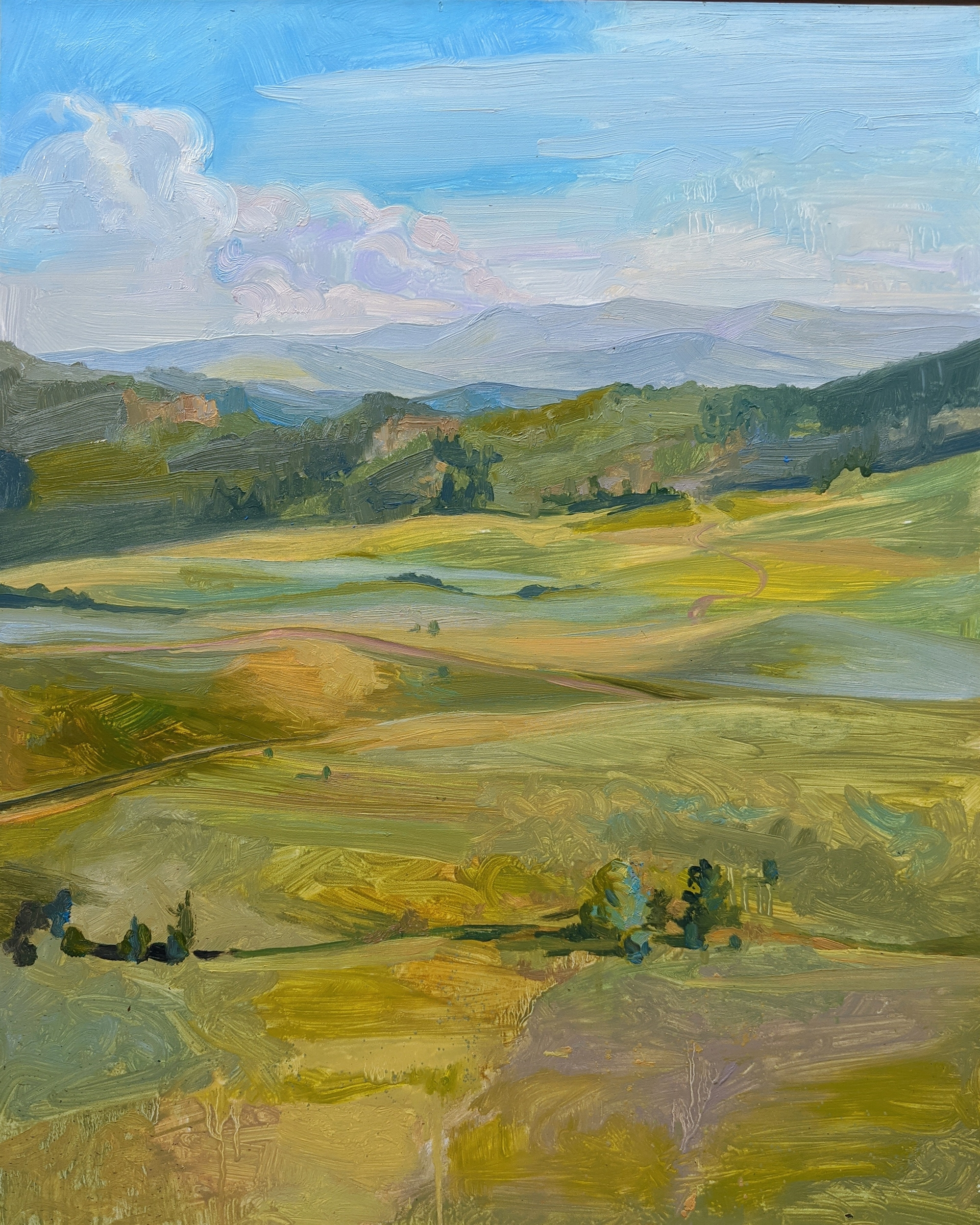 View Of The Meadow And The Rockies Beyond by Charis Carmichael Braun
