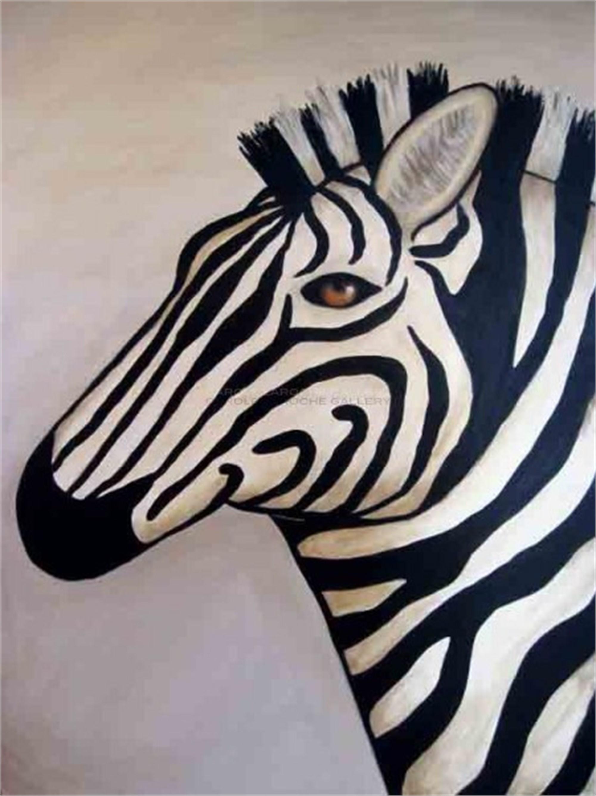 WHITE ZEBRA  by Carole LaRoche