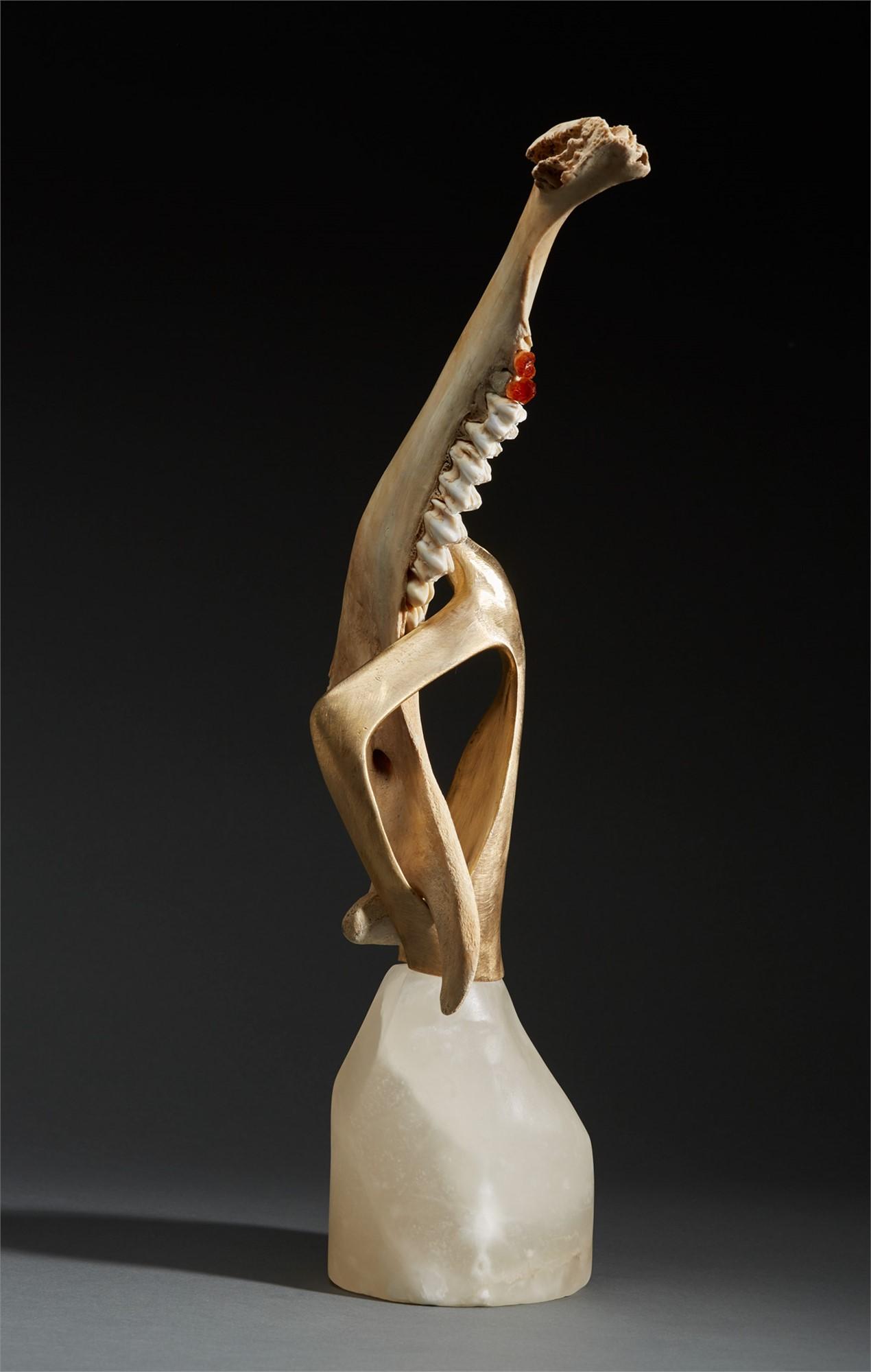 Tooth & Nail by Debra Baxter   ArtCloud