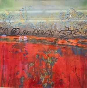 Vermillion Marsh