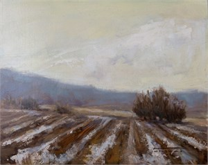 Winter Furrows