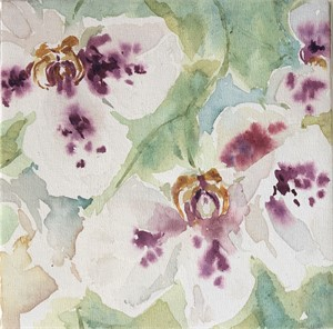 Orchids I, 2019