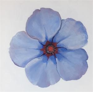 Flower Series #12, 2019