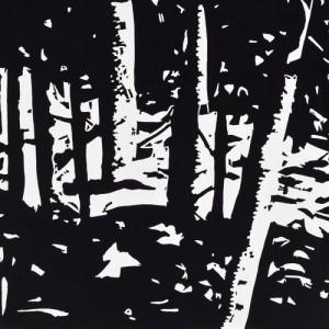 Maine Woods 2