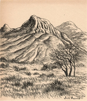 Untitled (Mountain and Tree Landscape), c. 1950s