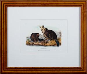 American Beaver Plate #46 Bowen Edition Octavo Suite, Quadruped, 2003