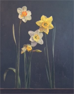 Various Daffodils