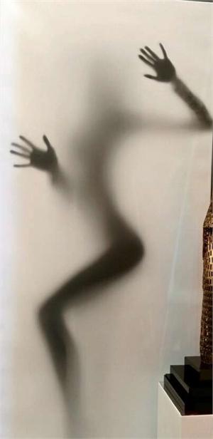 Shadow Of Seduction