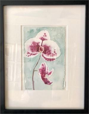 Studio Orchids, 2019