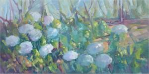 Hydrangeas in the Daylight