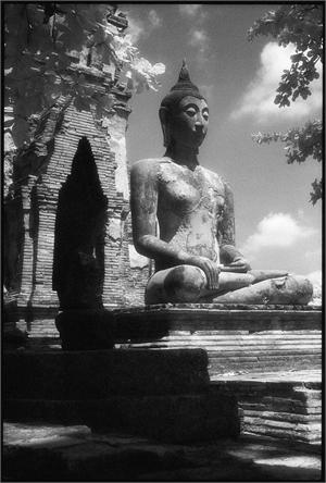 Buddah, Wat Phra (/5/25), 2014