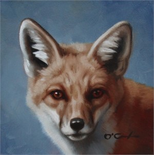 Red Fox Portrait, 2019