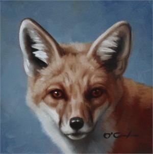 Red Fox Portrait, 2019