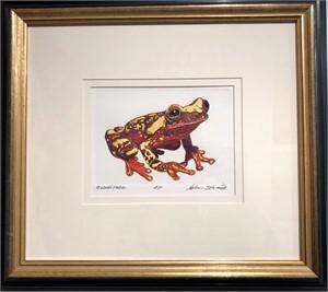 Clown Frog A/P, 2018
