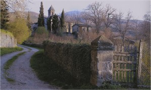 Garden Path, Cervini Estate, Italy, 2005