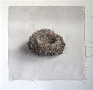 Untitled Nests #6 (1/20), 2018