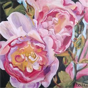Rose Dreams, 2017