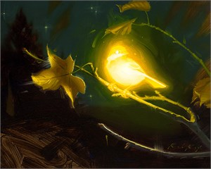 Bioluminescence - Hope