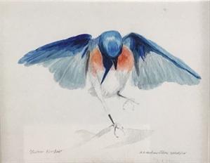 Papa Bluebird (/1), 2019