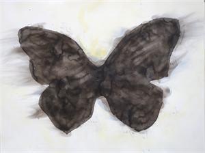 Big Smoke Butterflies, 2017