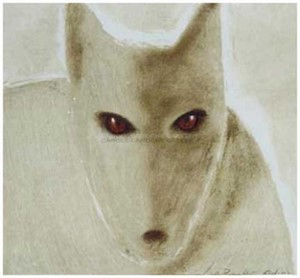 "GREY WOLF - limited edition giclee on paper w/frame size of 21""x21"""