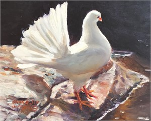White Dove 24