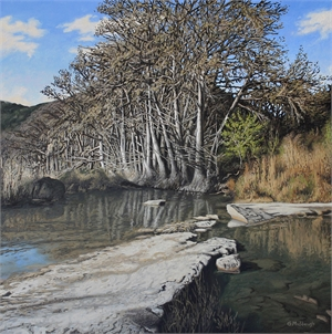 Grove of Trees along the Frio River in April