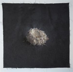 Nest #15, 2020