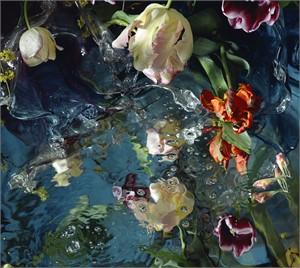 For Jan Van Huysum II, 2006 (2/6)