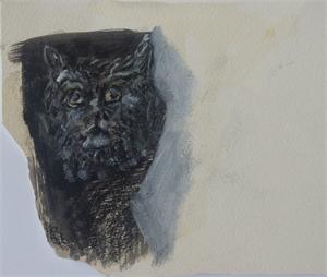 Shadow Cat, 2019