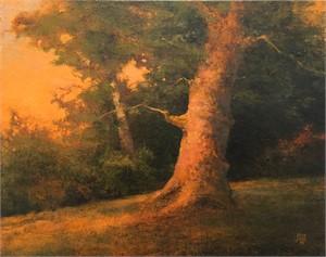Crooked Tree, 2018