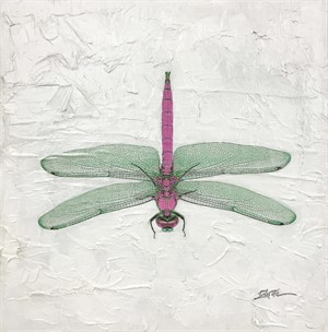Dragonfly, Pink