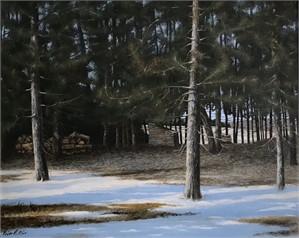 Eastern Pines by Roger Blair