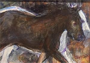 Black & White Horse Running