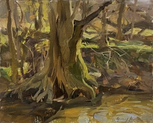Exposed Roots Study by Quang Ho